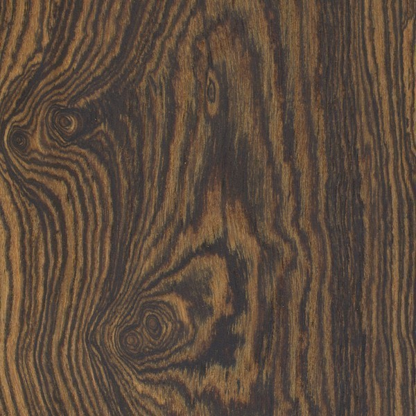 madera de bocote