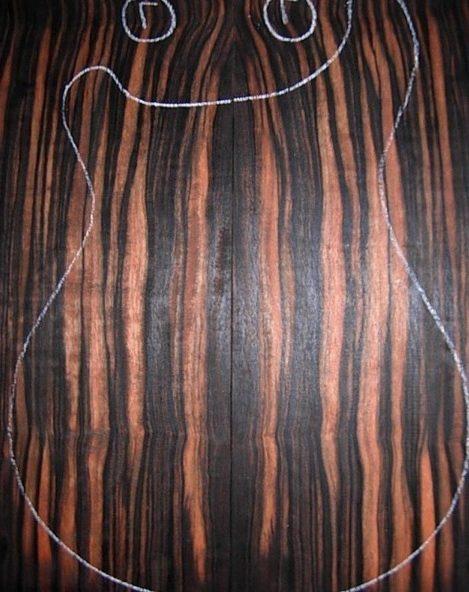 Guitara en madera de ebano macassar